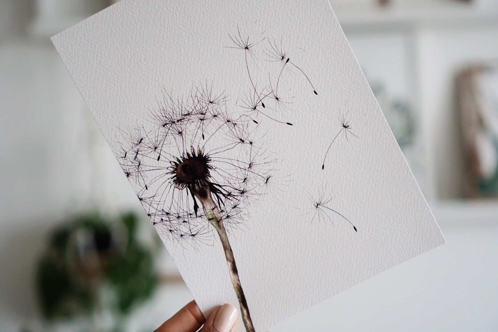 The-Lovely-Other-Illustration-Artwork-Print-Dandelion-4