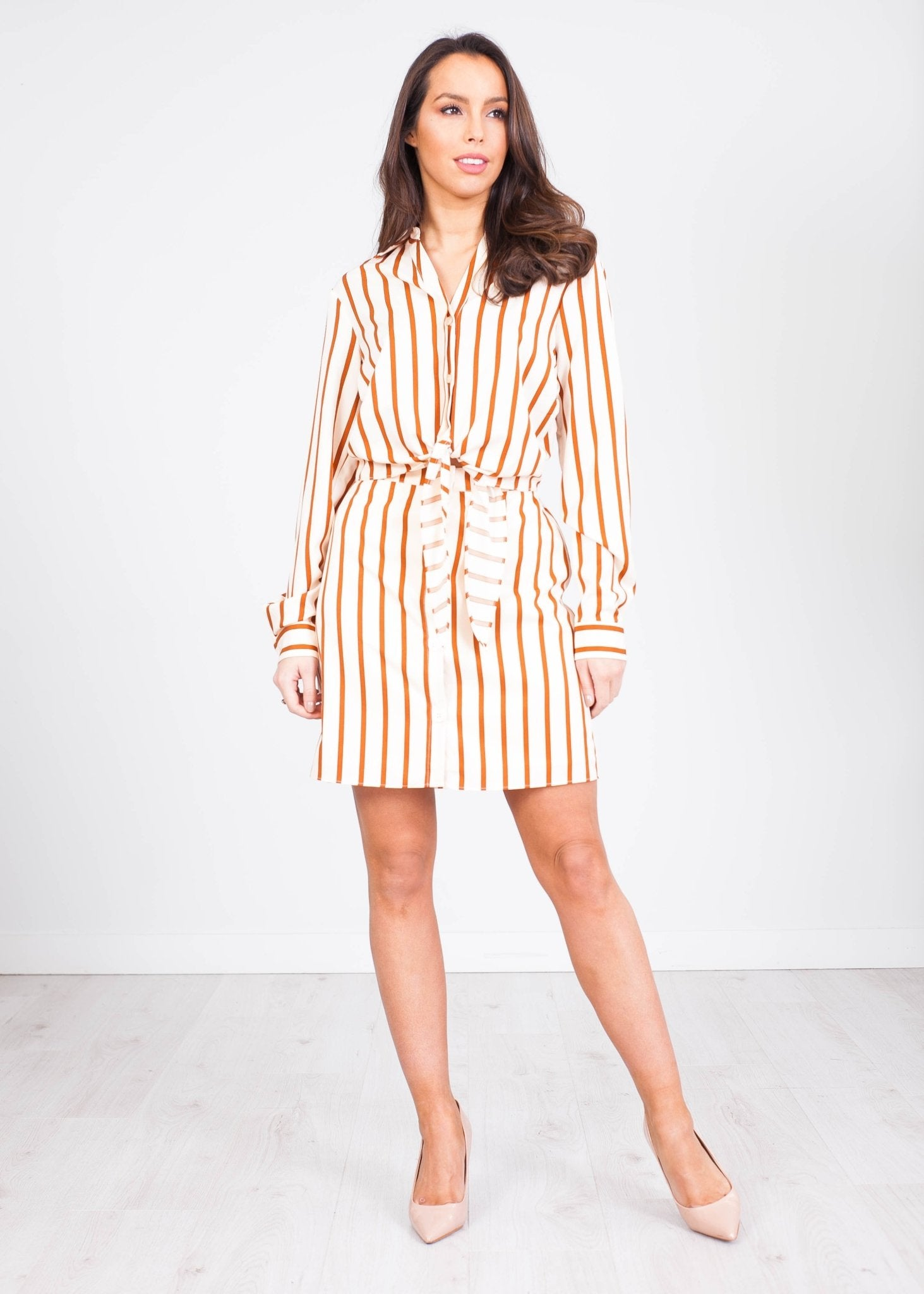 Sophia Stripe Shirt Dress - The Walk in Wardrobe