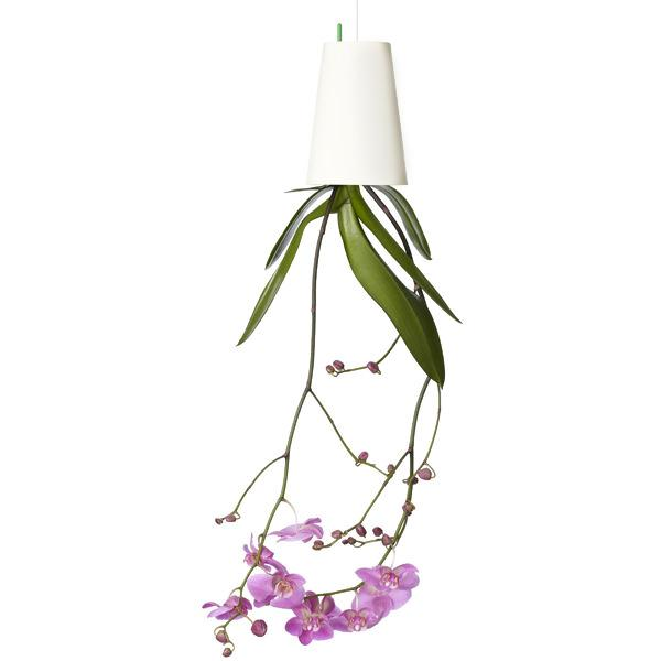 225 & 54% off a Upside Down Hanging Flower Pot ( Value $29.99 ) Taxes ...