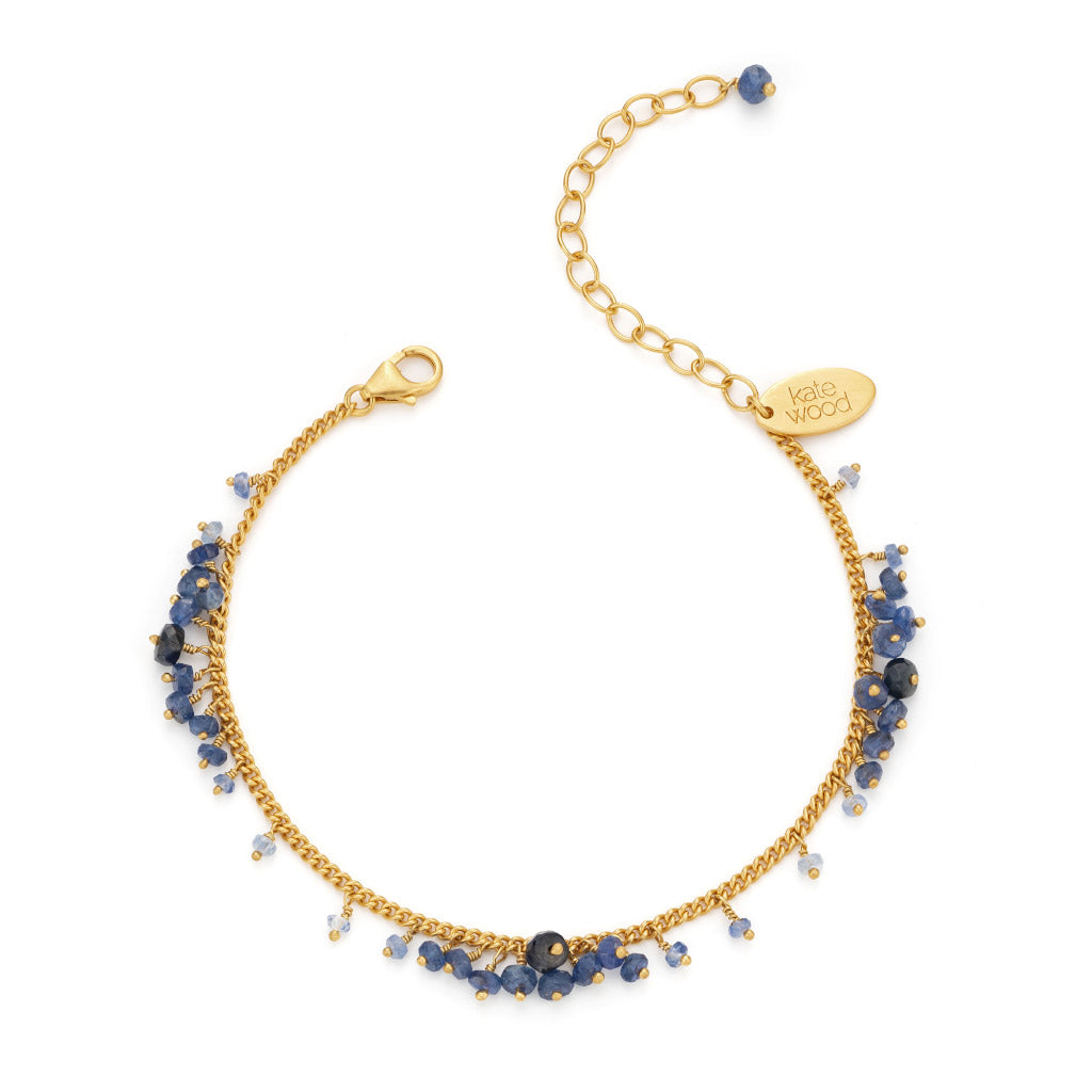 Kate Wood Sapphire Scattered Row Bracelet  EUR-RO-B04-SVY