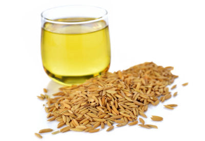 Oryza Sativa Bran Oil