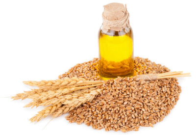Triticum Vulgare (Wheat) Germ Oil