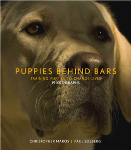 Puppies Behind Bars: Training Puppies to Change Lives