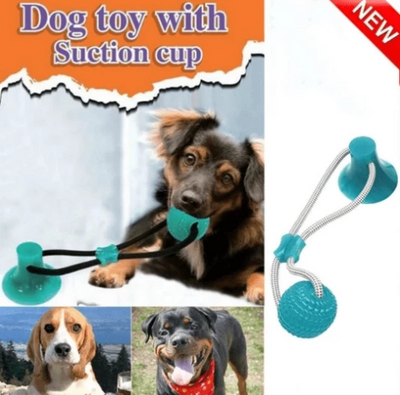 Suction Molar Dog Bite Toy ⭐(Best-Selling) ⭐