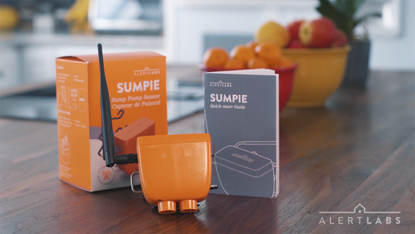 Why You Need a Smart Sump Pump Alarm and Sensor