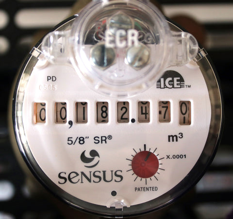 Water Meter | Analog odometer | Sensus