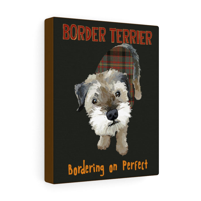 Border Terrier Canvas Gallery Wrap