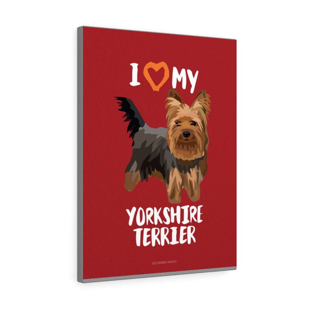 Yorkshire Terrier Canvas Gallery Wrap