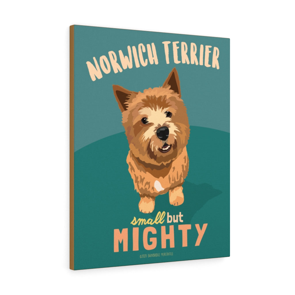 Norwich Terrier Canvas Gallery Wrap