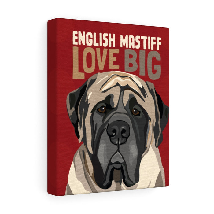 English Mastiff Canvas Gallery Wrap