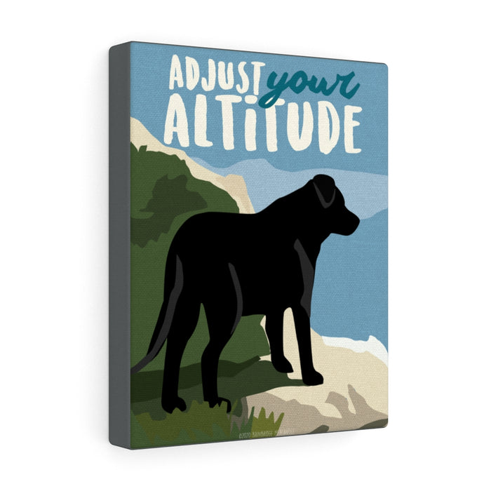 Adjust Your Altitude Canvas Gallery Wrap