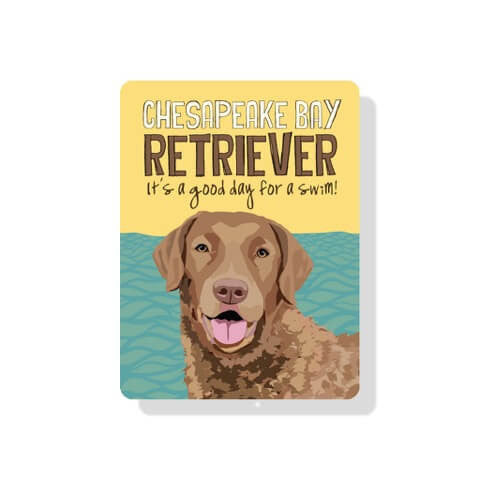 "Chesapeake Bay Retriever sign  - 9"" x 12""  -  Yellow"