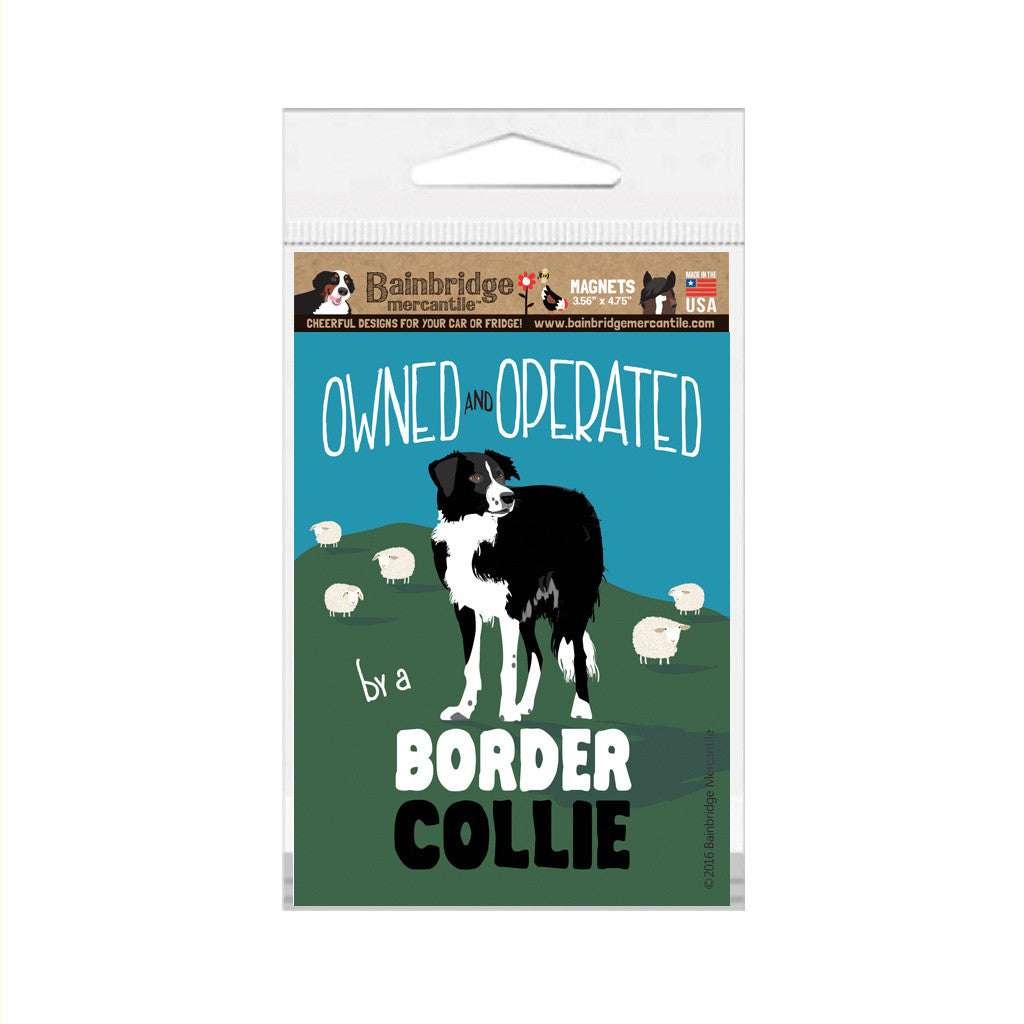 "Border Collie Magnet - 3.56"" x 4.75"""