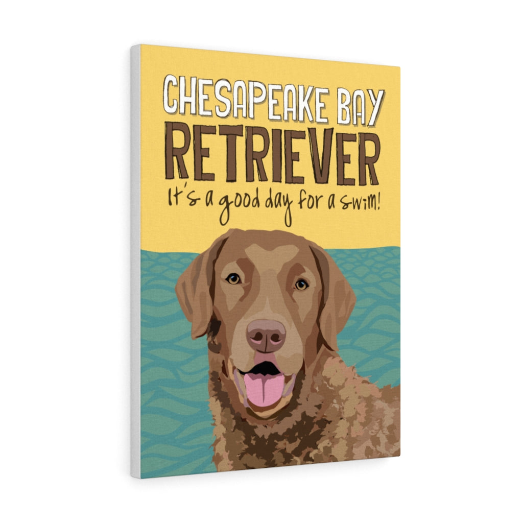 Chesapeake Bay Retriever Canvas Gallery Wrap