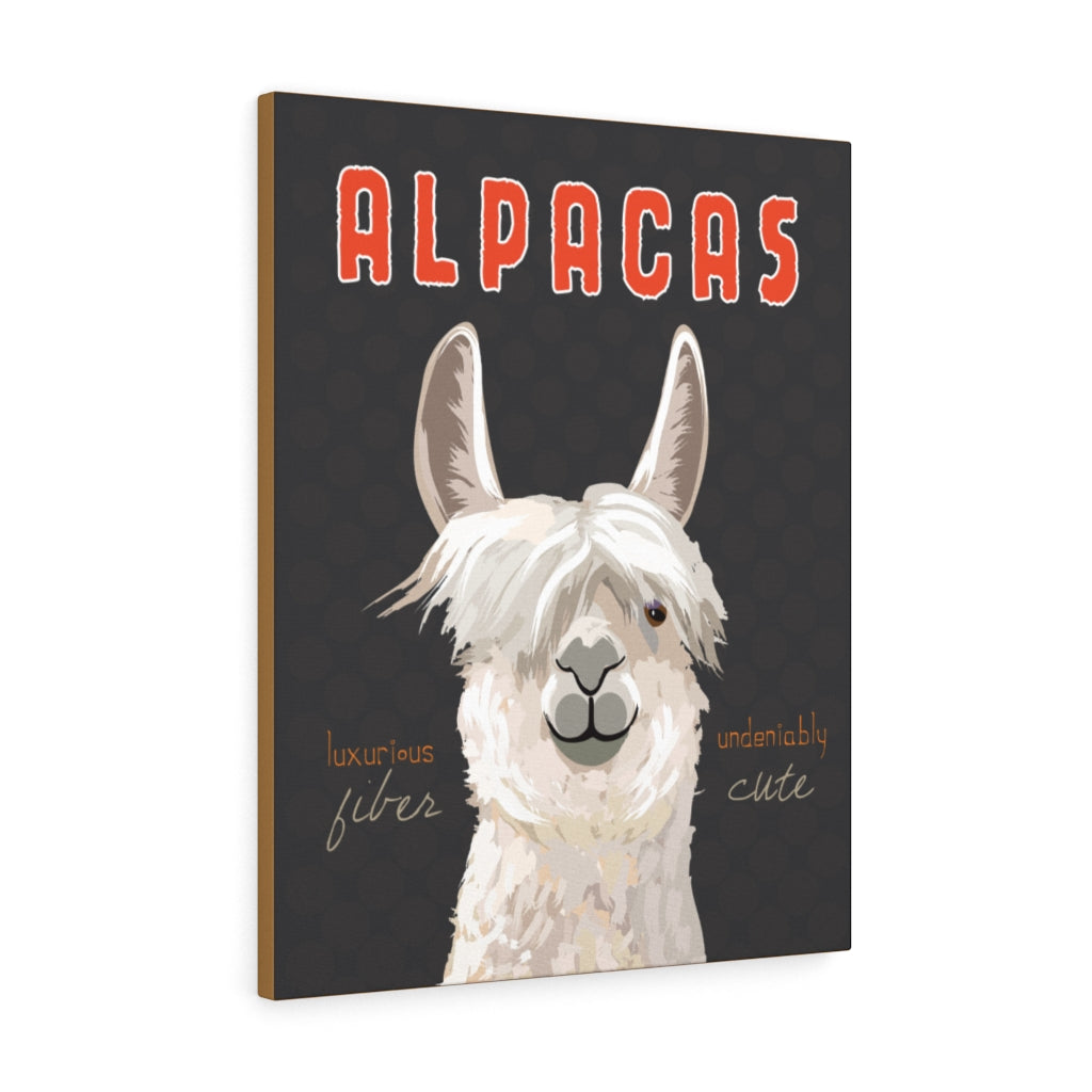 Alpacas Canvas Gallery Wrap