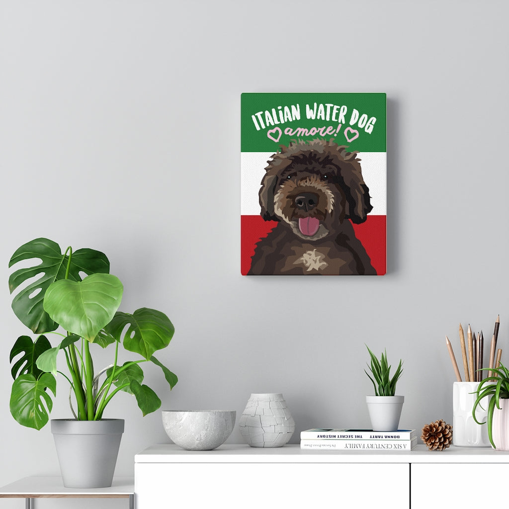 Italian Water Dog Canvas Gallery Wrap