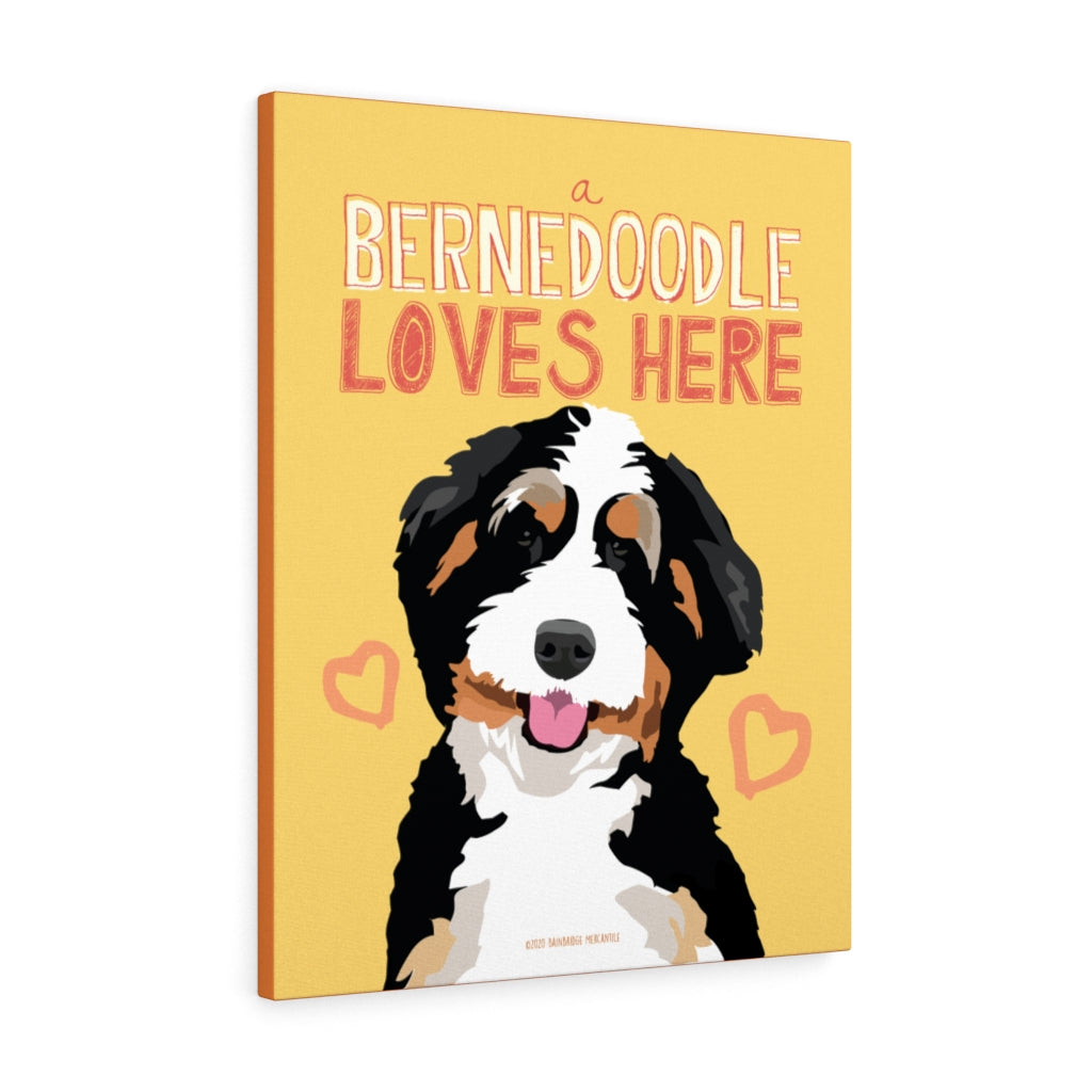 Bernedoodle - Canvas Gallery Wrap