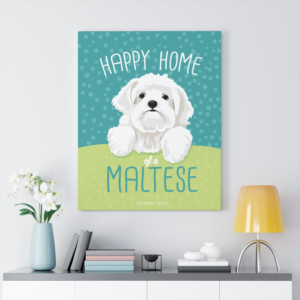 Maltese Canvas Gallery Wrap