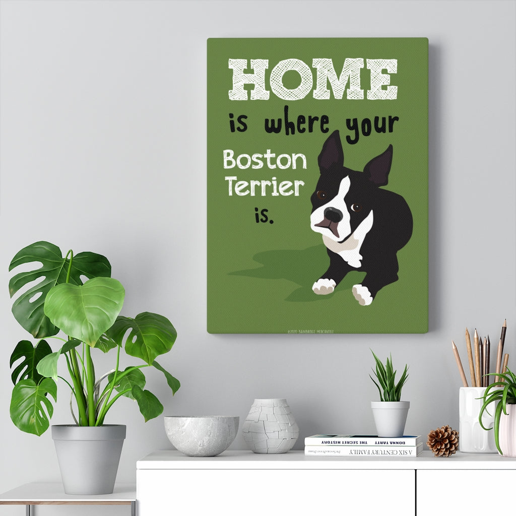 Boston Terrier - Canvas Gallery Wrap