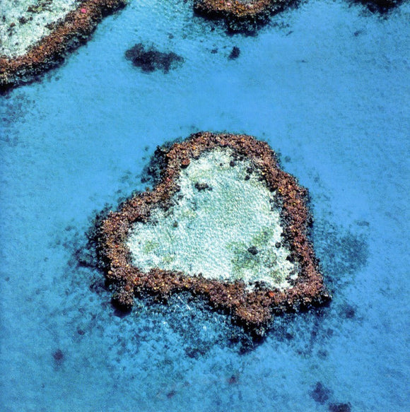The Great Barrier Reef in Australia by Emmanuel Valentin - 6 X 6 Inches (Greeting Card)