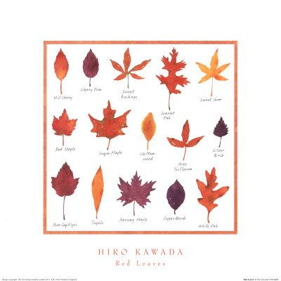 Red Leaves by Hiromi Kawada - 16 X 16 Inches - Fine Art Print.
