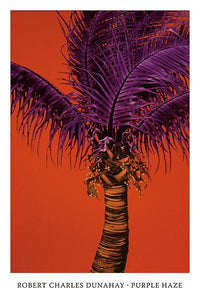 Purple Haze by Robert Dunahay - 24 X 36 Inches (Art Print)