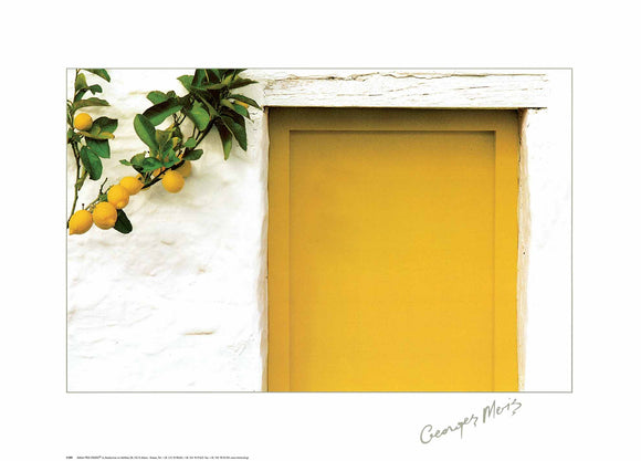 Lemons with Yellow Door by Georges Meis - 20 X 28 Inches (Art Print)