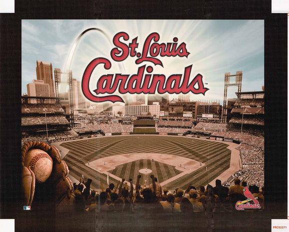 St. Louis Cardinals - 22 X 28 Inches (Canvas Roll or Stretched ready to hang)