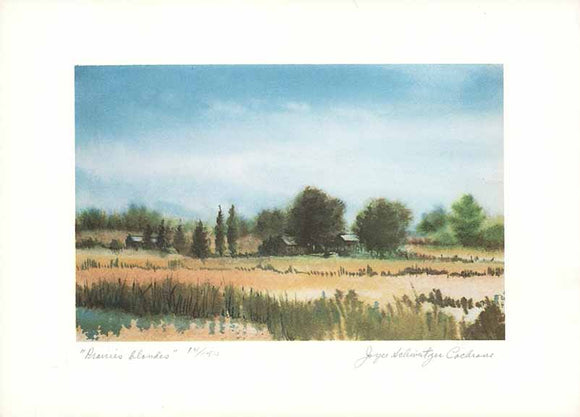 Prairies Blondes (Watercolour Numbered & Signed) 14/150