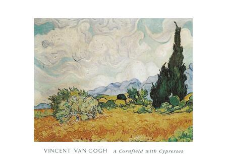 A Cornfield with Cypresses by Vincent Van Gogh - 20 X 28