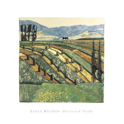 Harvested Fields by Lydia Bauman - 16 X 16