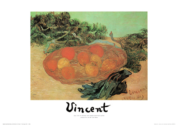 Still Life of Oranges and Lemons with Blue Gloves by Van Gogh - 20 X 28 Inches - Fine Art Poster.