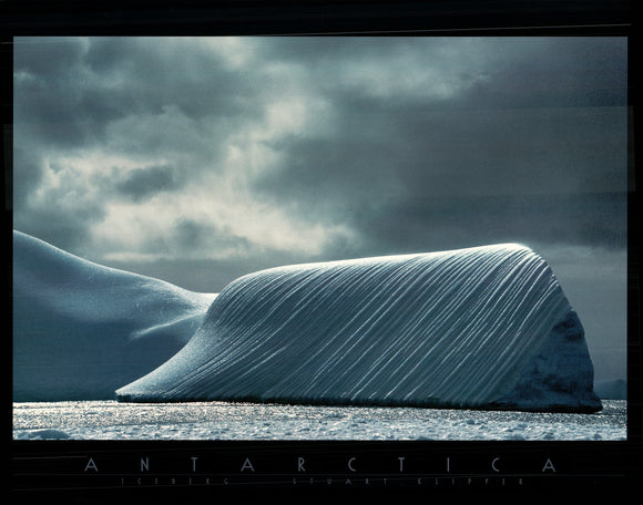 Antartica by Stuart Klipper - 24 X 32 Inches - Fine Art Poster.