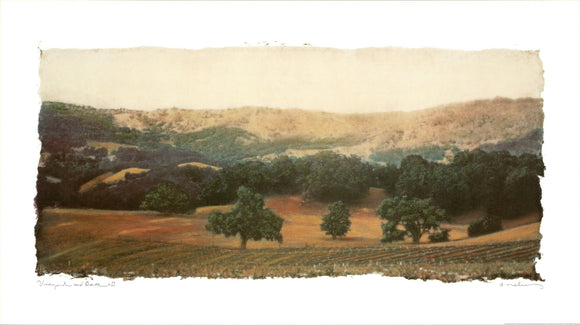 Vineyard and Oak II, 2001 by Natalie Levine - 22 X 39 Inches - Fine Art Poster.