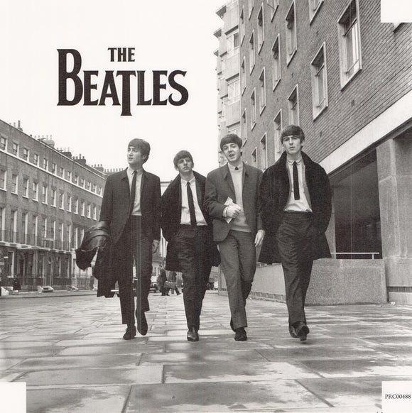 The Beatles - 20 X 20 Inches (Canvas Roll or Stretched ready to hang)
