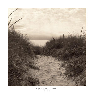 "Dune Path by Christine Triebert - 24 X 24"" - Fine Art Posters."