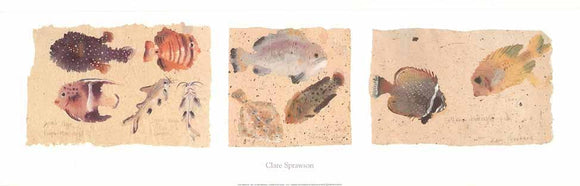 Fish by Clare Sprawson - 12 X 36 Inches - Fine Art Poster.