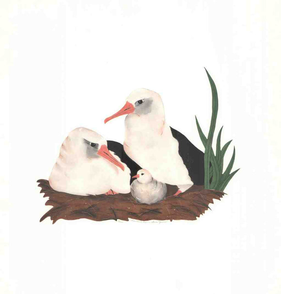 Albatross Family (Lithograph Numbered & Signed) 12/100