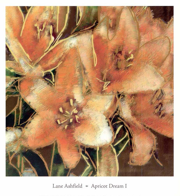 Apricot Dream I by Lane Ashfield - 14 X 13