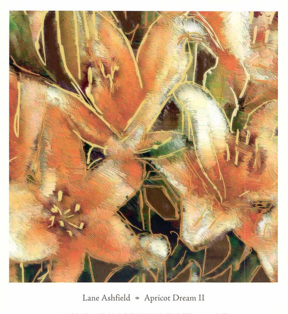 Apricot Dream II by Lane Ashfield - 14 X 13