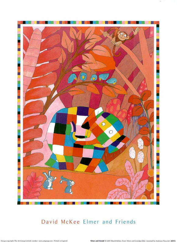 Elmer and Friends by David McKee - 12 X 16