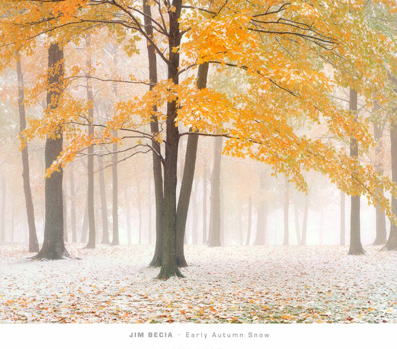 Early Autumn Snow by Jim Becia - 26 X 30