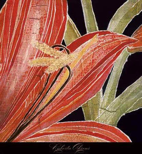 Red Amaryllis with Stem by Roberta Ahrens - 24 X 24 Inches - Fine Art Poster.