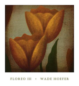 "Floreo III by Wade Hoefer - 28 X 30"" - Fine Art Poster."