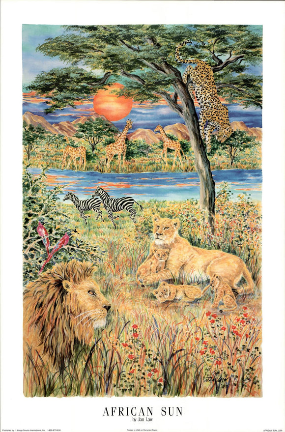 African Sun by Jan Law - 24 X 36 Inches - Fine Art Poster.