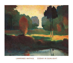 "Cedar in Sunlight by Lawrence Mathis - 28 X 32"" - Fine Art Poster."
