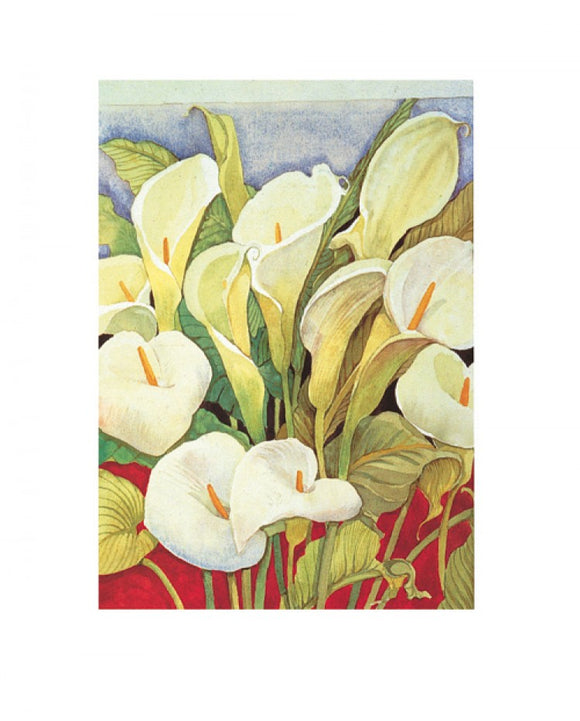 Arum Lillies by Lillian Delevoryas - 16 X 20