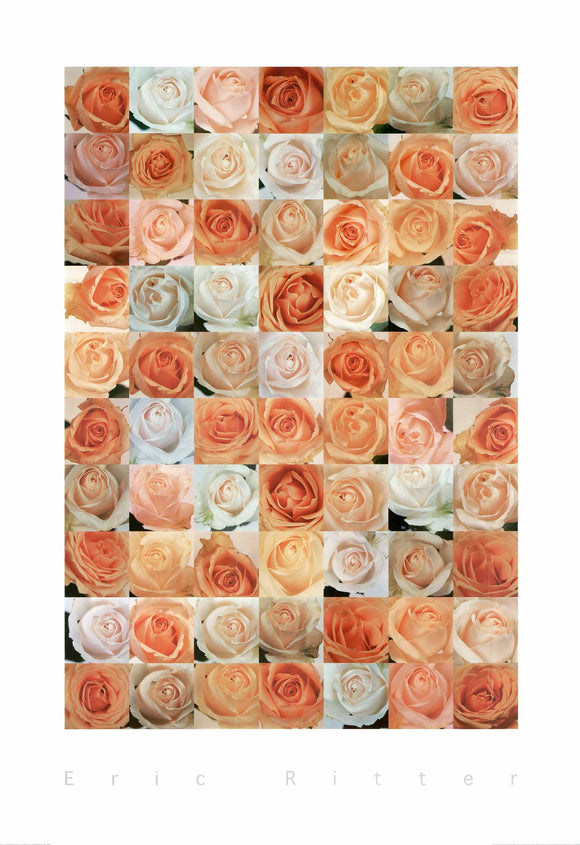 Roses by Eric Ritter - 28 X 40 Inches - Fine Art Poster.