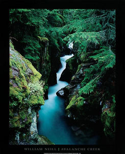 "Avalanche Creek by William Neill - 26 X 32"" - Fine Art Poster."