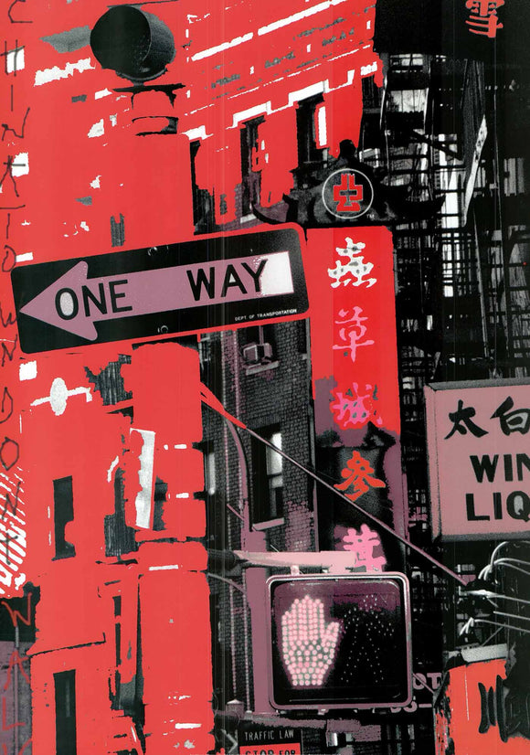 Chinatown, New York by Anne Valverde - 20 X 28